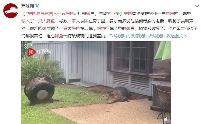 美国居民家闯入一只鳄鱼 把院子里的家具、植物都破坏了